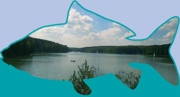 Angeln am Ellertshäuser See